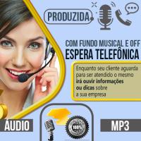 Espera Telefônica produzida com locução profissional pode escolher qualquer uma das vozes do nosso cast, vozes masculina, feminina, infantil ou caricata